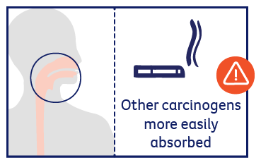 Other carcinogens more easily absorbed