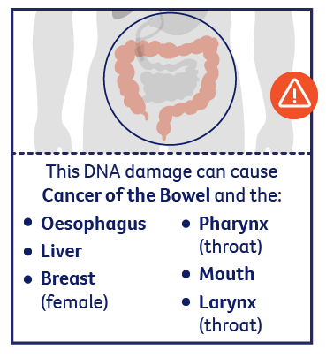 DNA damage can cause cancer of the bowel, oesophagues, liver, breast, mouth, pharynx, larynx