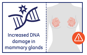 Increased DNA damage in mammary glands