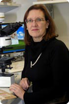 Professor Gail Risbridger